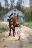 Girl with big horse. Little girl with her big horse walking on summer field Stock Photo