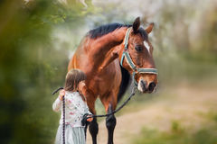Girl with big horse. Little girl with her big horse walking on summer field Stock Image
