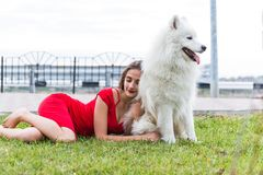 Girl with a big white dog royalty free stock image