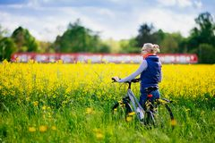 Girl with bike in meadow Stock Image
