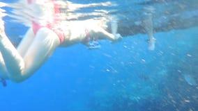Girl in Bikini snorkeling Royalty Free Stock Photos