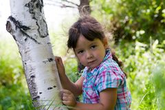 Girl and birch Stock Photos