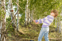 Girl in a birch grove Royalty Free Stock Photo