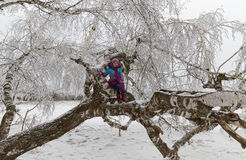 The girl among birches in the winter wood Stock Photo