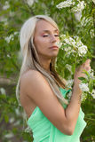 Girl with bird-cherry flowers Stock Photography