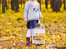 Girl with birdcage Stock Photography