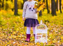 Girl with birdcage Royalty Free Stock Photo