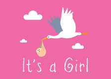 Girl Birth Illustration Royalty Free Stock Image