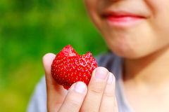 Girl bit off piece of strawberry and grimaced, displeasure emotion. Focus on the berry Stock Photography