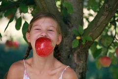 Girl biting into an apple under an apple tree Royalty Free Stock Images
