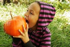 Girl biting pumpkin. Preteen girl biting pumpkin in garden stock photography