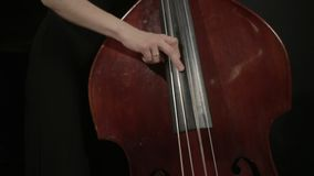 Girl in black dreess playing on the contrabass stock footage