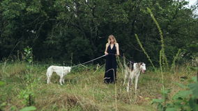 Girl in black dress with two Russian greyhounds. Girl in green dress with two Russian greyhounds 1 stock video