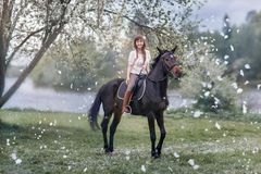 Girl  on black horse in blossom garden Royalty Free Stock Photo