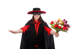 Girl in black and red carnival suit isolated on Stock Images