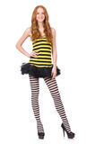 A girl in black and yellow striped dress isolated Stock Images