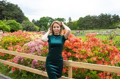 Girl blonde on a background of flowers in the park royalty free stock image