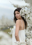 Girl and a blooming cherry garden Royalty Free Stock Image