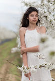 Girl and a blooming cherry tree Stock Photos