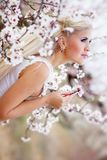 Girl in blossom garden Stock Photography