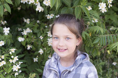 Girl in blossom jasmine Royalty Free Stock Photos