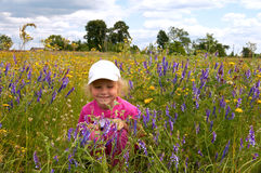 Girl on blossoming meadow Stock Image