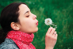 Girl blow on Dandelion. Against a background grass Stock Photography