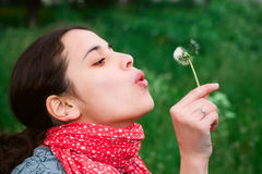 Girl blow on Dandelion. Against a background grass Royalty Free Stock Photography