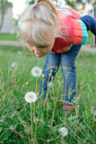 Girl blow dandelion. Little girl blowwing dandelion flower summer Stock Image