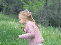 Girl blow dandelion Royalty Free Stock Photography