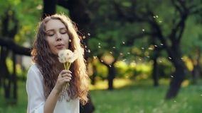 Girl Blow on a Dandelion. Woman blowing dandelion seeds at sunset stock footage