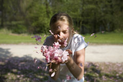 Girl blowing in cherry blossom Stock Image