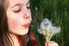Girl Blowing on a Dandelion. Little girl blowing dandelion on green meadow Stock Image