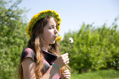 Girl blowing a dandelion Stock Images