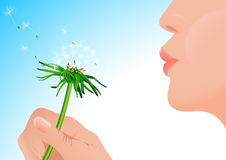 Girl blowing on dandelion Royalty Free Stock Photography