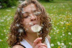 Girl is blowing on dandelion.  royalty free stock image