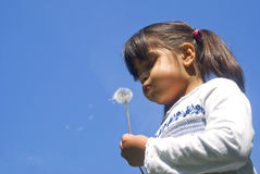 Free Girl Blowing Dandelion Stock Photos - 19262763