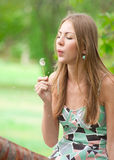Girl blowing on dandelion Royalty Free Stock Image