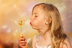 Girl blowing dandelion. A little girl blowing a huge dandelion flower Royalty Free Stock Images
