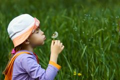 Girl blowing a dandelion Stock Photography