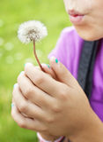Girl blowing dandelion Royalty Free Stock Photos