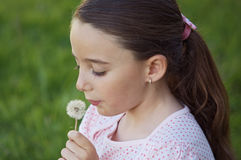 Girl blowing dandelion Stock Photography