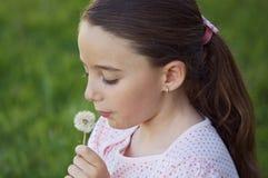 Girl blowing dandelion Stock Photography