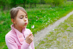Girl blowing on a dandelion Royalty Free Stock Image
