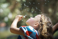 Girl blowing dandelion Royalty Free Stock Image