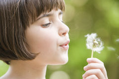 Girl blowing a dandelion Royalty Free Stock Photos