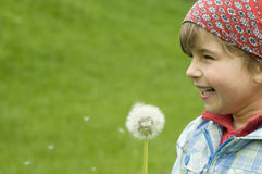 Girl blowing dandelion. Little girl blowing dandelion on green meadow Royalty Free Stock Photography