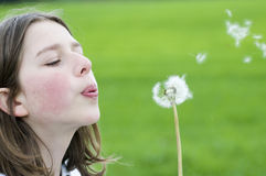 Girl blowing dandelion Stock Photo