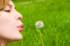Girl blowing on the dandelion Stock Images