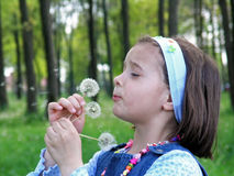 Girl Blowing on Dandelion. Girl with eyes closed blowing on Dandelion Royalty Free Stock Images
